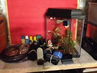 Corner fish tank with lots of extras