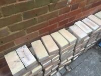 100 BRAND NEW BEIGE BRICKS FOR SALE. BOUGHT TOO MANY.