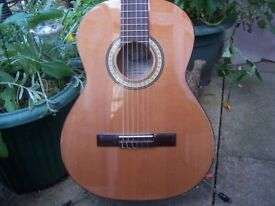 Tanglewood Dicovery Full Size Acoustic Guitar.