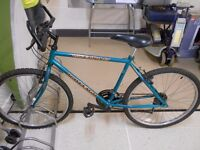 Raleigh Inferno 18 Mountain Bike (Blue)
