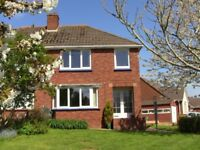 Beacon Heath, Large single room to let, in 3 Bedroom semi detached shared house.
