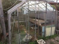 Greenhouse free to anyone who collects and dismantles