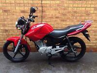 Yamaha YBR 125 125cc *SHOWROOM CONDITION & FSH*