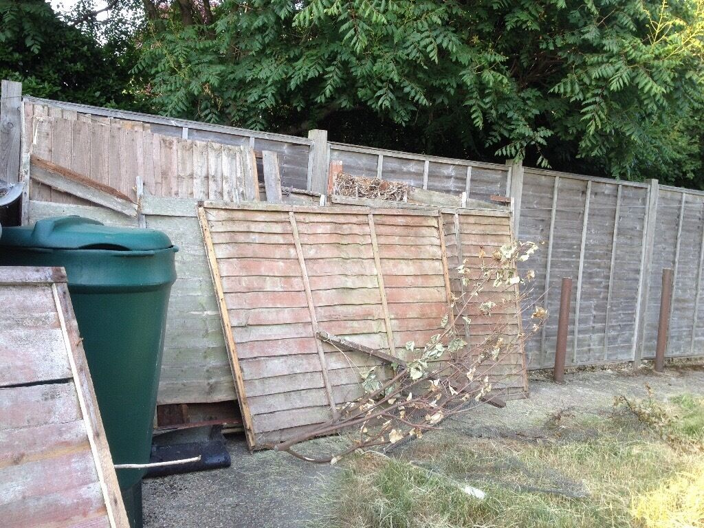Old fence panels and wood free in ipswich suffolk gumtree old fence panels and wood free baanklon Images