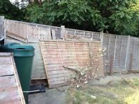 Old fence panels and wood - Free