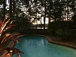 WOW Acreage Paradise $275* inc bills/wifi/pets (share kitchen) Yandina Maroochydore Area Preview