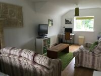 Large room to rent with en suite Monday to Friday only.