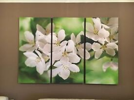 NEXT Large Lily Canvas Picture