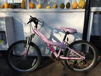 Girl pink mountain bike