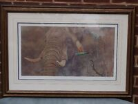 Signed limited edition wildlife print by Alan M Hunt