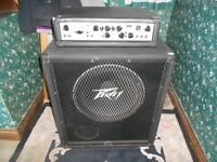 Bass guitar rig, amplifier and speaker