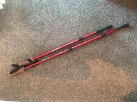 2 adjustable walking sticks for hiking