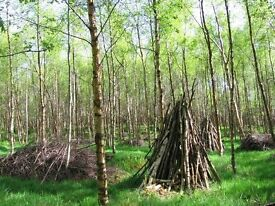 Fire Wood Management & Collection Days, Duddingston Woods