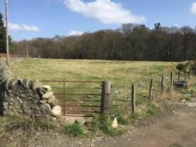 Grazing Paddock For Sale