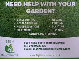 Gardener / Garden Tidy / Grass Cutting / Hedge Cutting / Hedge Reductions / Belfast / Newtownards