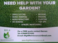 Gardener / Garden Tidy / Grass Cutting / Hedge Cutting / Hedge Reductions / Belfast / Newtownards