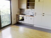 Modern studio flat with free swimming pool, gym and concierge *AVAILABLE IMMEDIATELY*