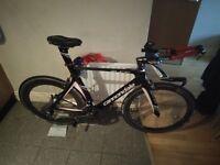 Cannondale Slice TT Bike (Large)