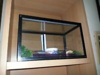1.5ft glass reptile tank for sale