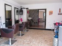 Hair and Beauty Salon for sale, Harleston Norfolk