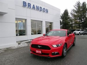 2016 Ford Mustang Coupe Ecoboost Premium **Sync**Heated Seats**R