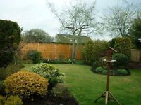 landscape gardener required, must have experiance, Clean driving licence an advantage