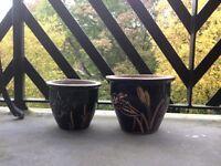 Plant garden flower pots
