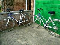 2 Raleigh Pioneer Bikes (gents & ladies)