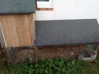 rabbit plus two hutches