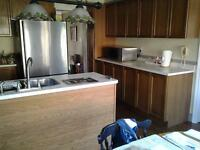 kitchen cabinets used in good shape