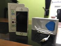 IPhone 5s Gold 16GB Unlocked