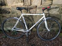 Raleigh race special single speed road bike