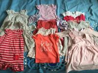 Summer bundle