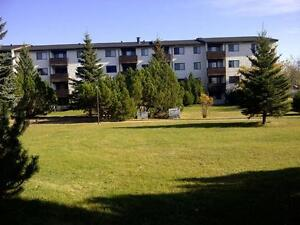 St Paul; Spacious 1 and 2 Bedroom Suites!