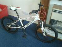 Claude Buttler childs downhill bike