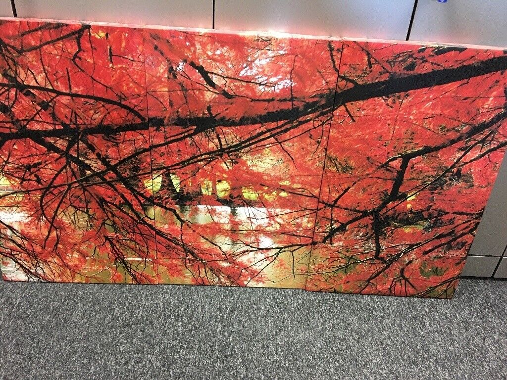 large 3 part canvas red trees leaves in harrow london gumtree