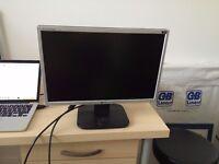 17inch FHD monitor - LG