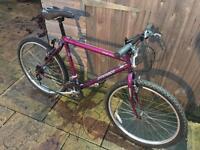 Ammaco Gran Gru Mountain Bike. Very good spec, Free D-Lock, Lights, Delivery