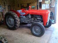 MF 35 3 cylinder restored £3500