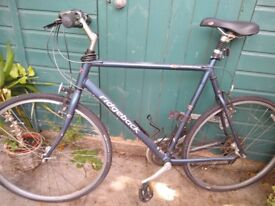 XL Men's Ridgeback Velocity Hybrid bike