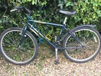 Specialized bike for renovation to get back on road