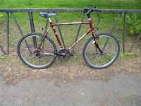 """Large 22"""" Frame RALEIGH Mountain Bike. Fully Servivced, Ready To Ride & Guaranteed."""