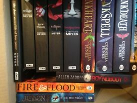 Books - Stephanie Meyer, Cornelia Funke and others - some never been read.