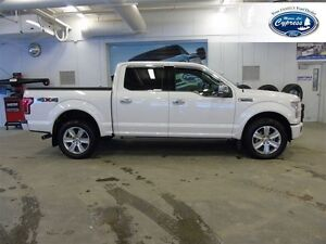 2015 Ford F-150 Platinum (Remote Start  Heated/Cooled Seats)