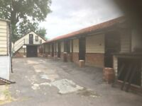 4 stables vacancies available in Epping/Theydon Bois with excellent hacking through Epping forest