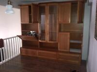 Cabinet or Wall Unit