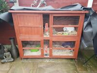 Two Lop Eared Rabbits with Large Double Hutch, Food, Bedding, Thermal sheet and Accessories