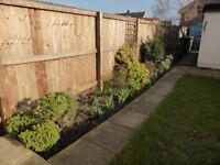 Little Stoke - Spacious 3 bed house for professional couple or family
