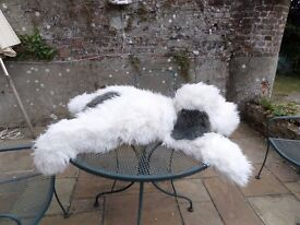 Huge toy shaggy dog by Birthdays. 5 ft long used on bed etc. Needs a groom