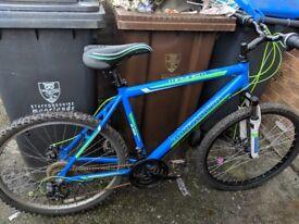 Barracuda mountainbike